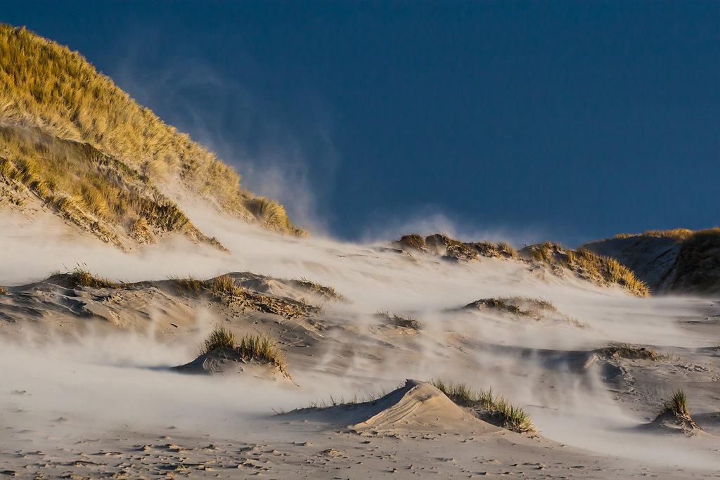 Sandflug